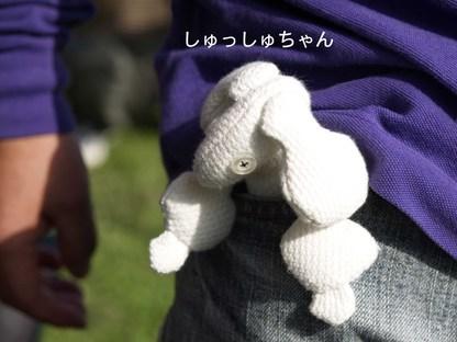 Photo_44